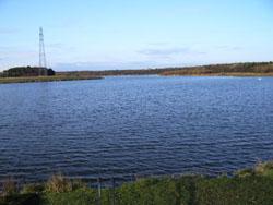 Forums queen elizabeth ii country park woodhorn for Lake elizabeth fishing